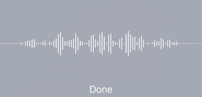 iPhone Disctation App
